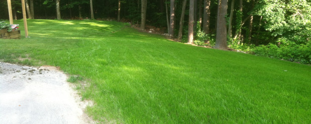 Excavation and New Lawn in Derry, NH